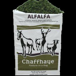 chaffhaye-alfalfa