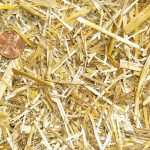 chopped straw horse-bedding